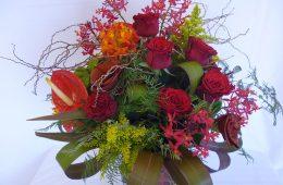 Reds & Rose wild garden