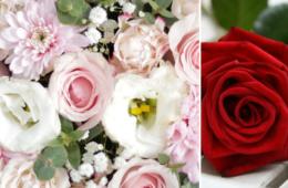 Pinks, whites & red roses